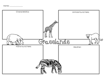 Ecosystem worksheets 4th grade pdf