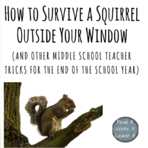 How to Survive a Squirrel Outside Your Window (and Other Teacher Tricks)