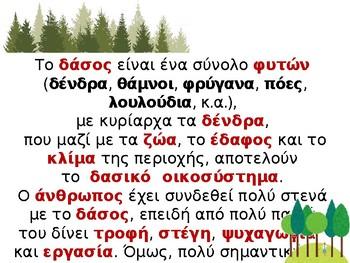 Ο φίλος μας το δάσος 1