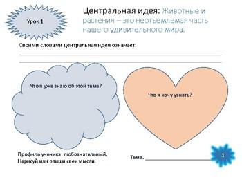 IB PYP in Russian Животные и растения