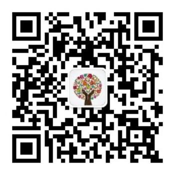 学 shape Wall Size Word Search template for Chinese Vocabulary V2.0