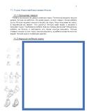 Рабочая тетрадь - Учу русский самостоятельно. Уроки 11 - 20.