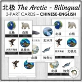 北极 The Arctic Chinese Bilingual Vocabulary 3 Part Cards Mo