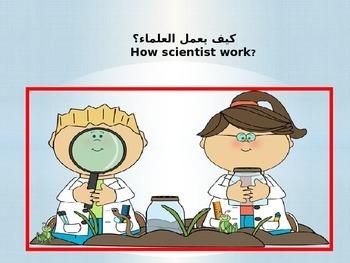 كيف يعمل العلماء ؟