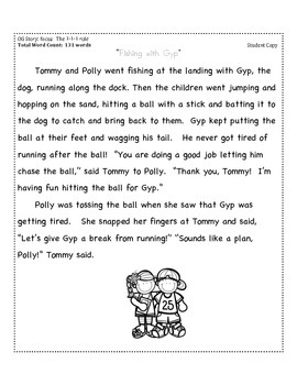 """1-1-1 Rule"" Reading Passage (Fluency Practice + Reading Record Form)"