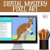 Fiction or Nonfiction Digital Mystery Pixel Picture