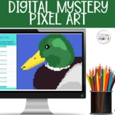 Irregular Plural Nouns Digital Mystery Pixel Picture