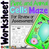 Plant and Animals Cells Maze Worksheet for Review or Assessment