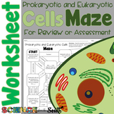 Prokaryotic and Eukaryotic Cells Maze Worksheet for Review or Assessment
