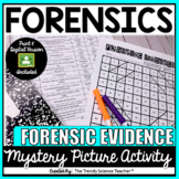 FORENSIC EVIDENCE MYSTERY PICTURE (Print & Digital)