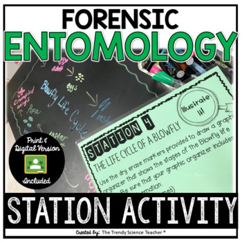 Forensic Entomology Worksheets & Teaching Resources | TpT