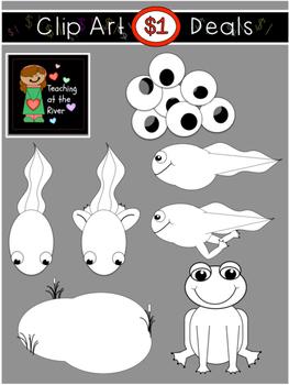 $1 Frog Life Cycle Clip Art Dollar Deal 7