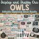 Owls Classroom Theme Decor Bundle Editable