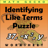 #267 - Identifiying Like Terms Puzzle