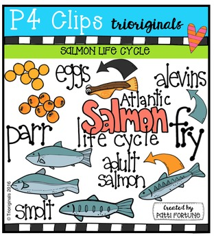 Salmon Life Cycle  {P4 Clips Trioriginals Digital Clip Art}