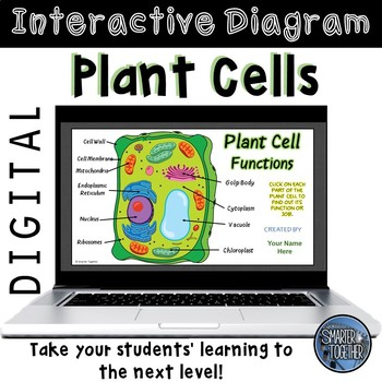 Plant Cell Function Digital Interactive Diagram by Smarter ...