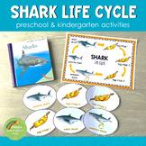 Shark Life Cycle Set - Preschool & Kindergarten