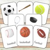 Montessori Sports Toob 3 Part Cards