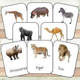 Montessori Wild Animals Toob 3 Part Cards