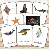 [50%OFF 48hrs] Montessori Ocean 3 Part Cards