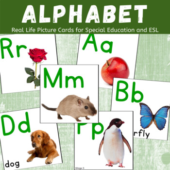 Alphabet Cards, Autism Alphabet