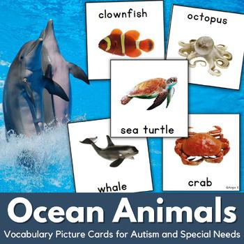 Autism Communication Cards- Ocean Animals