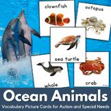 Ocean Animals Autism Communication Cards, Pecs