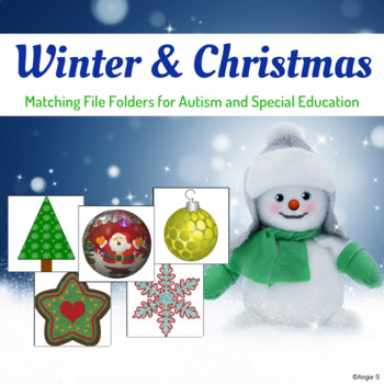 Winter Activity - Matching File Folders for Autism