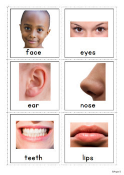 Body Parts Vocabulary Photo Cards for Autism, ESL