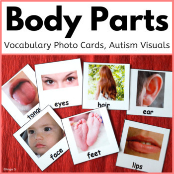 Body Parts Photo Cards for Autism, Pecs
