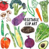 Watercolor Vegetable Clipart
