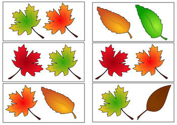 Fall Bundle - Vocabulary Cards, Activities, Worksheets