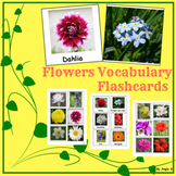 Flowers Vocabulary Flashcards for Speech Therapy and ESL
