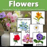 Flowers Vocabulary Flashcards, Pecs