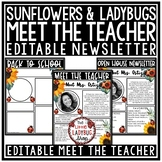 Ladybug Welcome Back to School Letters Editable: Meet The Teacher Template
