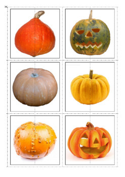Fall Activity, Pumpkins