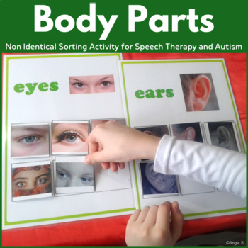 Non-Identical Sorting Activity for Autism and Special Ed -