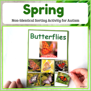 Non-Identical Sorting- Spring