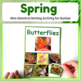 Spring Activity - Non Identical Sorting for Speech Therapy
