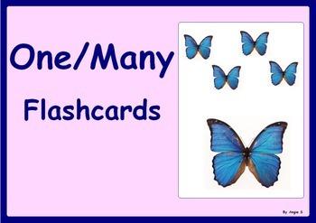 One/Many Flashcards