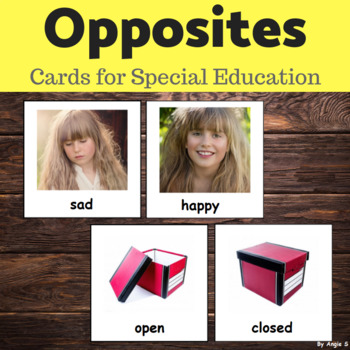 Opposites Cards for Special Education and ESL