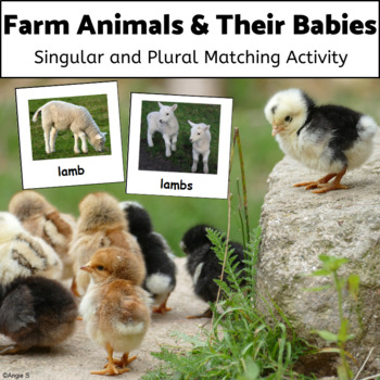 Plurals - Farm Animals & Their Babies, Plural Nouns