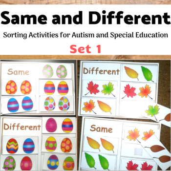 Same and Different Sorting Bundle for Autism and Special Ed