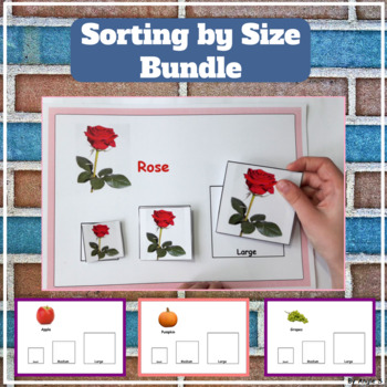 Sorting by Size Bundle - Fruits, Vegetables, Flowers