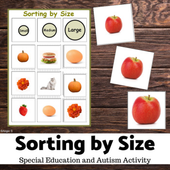Sorting by Size Activity