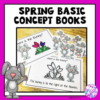 Basic Concept Speech Therapy (St. Patrick's Day, Easter, and Spring)