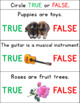 True or False Autism Worksheets