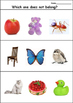 Which One Does Not Belong? Initial Letter Sounds