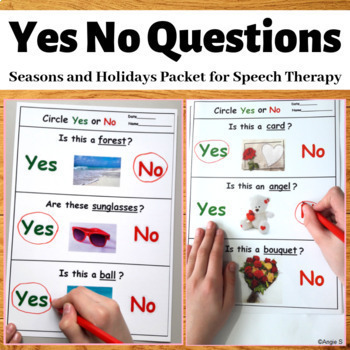 Yes No Questions Bundle - Seasons and Holidays, Autism Worksheets