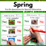Spring Activity Yes No Questions for Speech Therapy and Special Ed